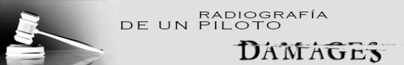 BANNER RADIOGRAFIA DE UN PILOTO
